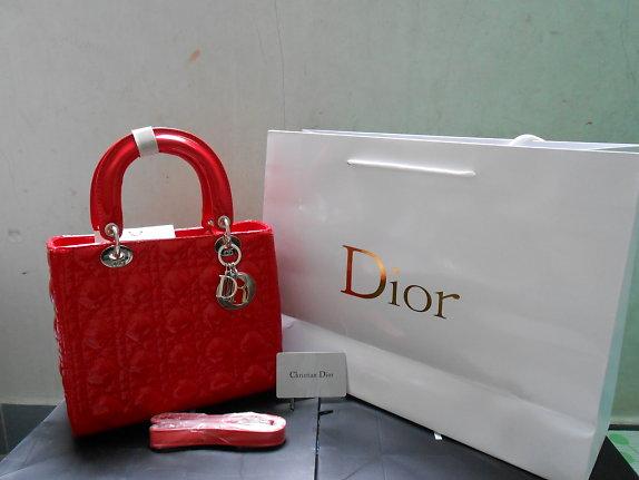 In túi giấy Dior cao cấp hcm