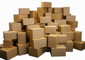 in thung carton (1)